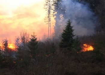 Level 3 'Go Now' Evacuations In Linn, Marion Counties Due To Grass Fire
