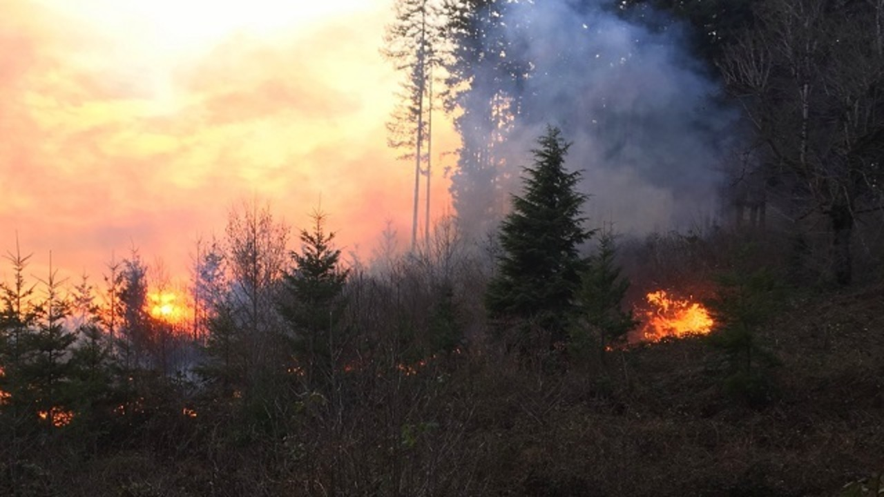 Evacuations ordered amid Santiam Park Fi 10 78345764 ver1.0 1280 720