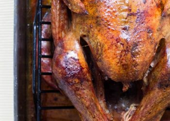 Turkey Smoker Starts House Fire