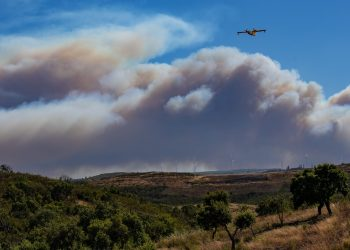 Do You Have a Wildfire Plan?