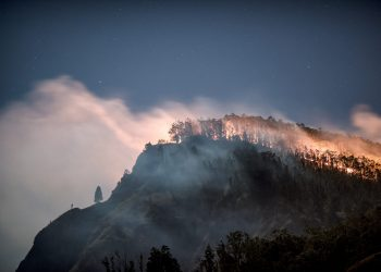 Helpful Resources for Pacific Northwest Wildfires